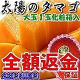 マンゴー 太陽のタマゴ 1玉 2L 約300~350g 化粧箱入 宮崎 宮崎マンゴー 太陽のたまご