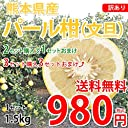 パール柑 文旦 送料無料 訳あり 1.5kg S~3Lサイズ混合 無選別 熊本県産 2セットで1セット 3セットで3セットおまけ 上品な甘味と爽やかな酸味 グレープフルーツ みかん