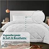Cozynight Twin Size Comforter Duvet Insert-Soft Quilted Down Alternative Comforter Fluffy Lightweight HypoallergenicBreatha