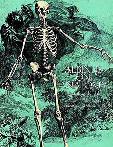 Albinus on Anatomy (Dover Anatomy for Artists)の詳細を見る