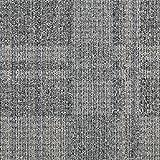 スミノエ タイルカーペット ECOS ID-5301 50X50cm 16枚セット 13301730