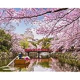 LovetheFamily 姫路城のお堀と桜 数字キットによる絵画 数字油絵 数字キット塗り絵 手塗り DIY絵 デジタル油絵 ホーム オフィス装飾 (40*50cm, フレーム付き)