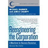 Rengineering the Corporation: A Manifesto for Business Revolution