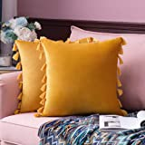 MIULEE Pack of 2 Velvet Soft Solid Decorative Throw Pillow Cover with Tassels Fringe Boho Accent Cushion Case for Couch Sofa