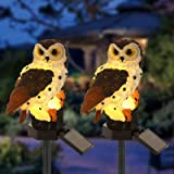 Careland Solar Fake Owl Garden Lights LED Decoy Owl Lamp Up to 8 Hrs Long Last Auto On/Off Waterproof Owl Night Light Path Ya