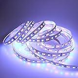 LEDENET RGB+W+WW Flexible LED Strip Lighting Color Changing Color Temperature Adjustable Cold White Warm White CCT RGB LED Ta