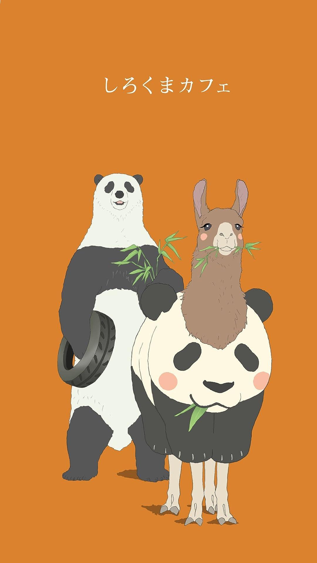 パンダ 壁紙 Iphone Iphone 壁紙 岸 優太 パンダ あなたのための最高の壁紙画像