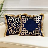 Avigers Pack of 2 Luxury Navy Blue Decorative Pillows with Tassels 18 x 18 Inches Square Chain Velvet Throw Pillow Covers Cus