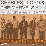 Vanished Gardens (2Lp)