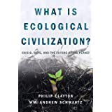 What Is Ecological Civilization: Crisis, Hope, and the Future of the Planet