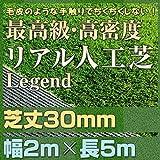 最高級 リアル 人工芝 「レジェンド」 芝丈30mm《2m×5m》 【防炎認証済】