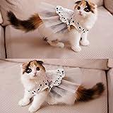 i'Pet Princess Floral Cat Party Bridal Wedding Dress Small Dog Flower Tutu Ball Gown Puppy Dot Skirt Doggy Photo Apparel Stre