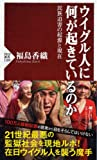 ウイグル人に何が起きているのか 民族迫害の起源と現在 (PHP新書)