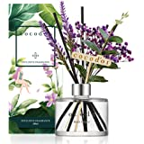 Cocodor Lavender Reed Diffuser/Black Cherry / 6.7oz(200ml) / 1 Pack/Home Decor & Office Decor, Fragrance and Gifts