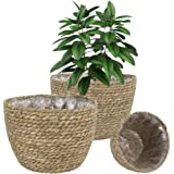 Seagrass Plant Basket Woven Plants Pots Indoor Basket Planter with Plastic Liners Decorative Flower Pot Cover Outdoor 3 Pack