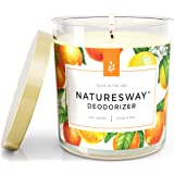 Crisp Citrus Odor Eliminating Scented Candles for Home | Non Toxic Long Lasting Soy Candles | Attractive Design | 12.5 oz Jar