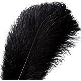 20pcs Natural Ostrich Feathers Plume - 10-12inch(25-30cm) for Wedding Centerpieces Home Decoration (25-30cm,Black)