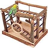 Niteangel Natural Living Playground for Birds, Bird Activity Centre