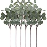 YOUZAN Artificial Eucalyptus Leaves Stems 6 Pcs Faux Silver Dollar Eucalyptus Leaf Branches in Grey Green for Home Party Wedd