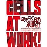 はたらく細胞 1(完全生産限定版) [DVD]
