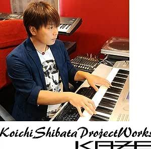 KOICHI SHIBATA PROJECT WORKS.