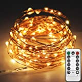 Twinkle Star 33ft 100LED Copper Wire String Lights Fairy String Lights 8 Modes LED String Lights USB Powered with Remote Cont