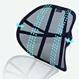 Big Ant Lumbar Support, Car Back Support Mesh Double Layers Ergonomic Designed for Comfort and Lower Back Pain Relief - Car S