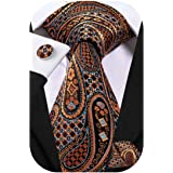 Dubulle Mens Paisley Tie and Pocket Square Woven Silk Necktie set Wedding Tie