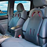 BackShield - Back Support for Car Seats Designed for Lower Back Pain, Sciatica Relief, Lumbar Cushion to Improve Posture, Por