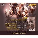Gunter Wand : Deutsches Symphonie - Orchester Berlin [8CD box]