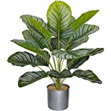 """BESAMENATURE Artificial Calathea Orbifolia Plants, Potted Artificial Plant for Home Office Decoration, 23"""" Tall, Ships in Gra"""