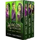 The Avalon Chronicles Boxset: A Modern Day Arthurian Fantasy