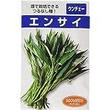 フタバ種苗 つるなしエンサイ (葉菜) 種・小袋詰(20ml)