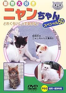 ニャンちゃんスペシャル50 [DVD]