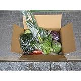 あわや自然農園 有機無農薬野菜セット(10種類以上)送料込