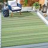 Santex TT006 Outdoor/Indoor Plastic Rug,Easy to Clean,Mildew, UV, Stain and Water Resistant(Green,8x10)