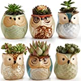 Sun-E 6 in Set 2.5 inch Owl Pot Ceramic Flowing Glaze Base Serial Set Succulent Plant Pot Cactus Plant Pot Flower Pot Contain