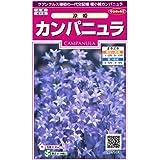 サカタのタネ 実咲花5143 カンパニュラ 涼姫 00905143-01