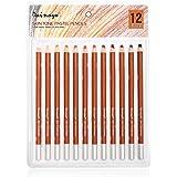 Dainayw Skin Tone Pastel Pencils, Soft 5mm Core, Premier Colored Pencils For Artist Drawing, Sketching - 12 Piece Portrait Se