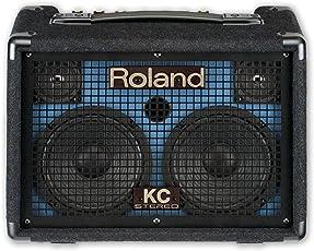 Roland ローランド/KC-110 キーボードアンプ
