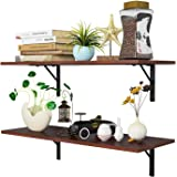 Homfa Floating Shelves Wall-Mounted Display Storage Ledge with Bracket for Bathroom, Kitchen, Living Room, Large 31.5X 11.6X