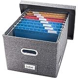 Prandom File Organizer Box - Set of 1 Collapsible Decorative Linen Filing Storage Hanging File Folders with Lids Office Cabin