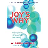 Joy'S Way: A Map for the Transformational Journey: An Introduction to the Potentials for Healing with Body Energies