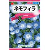 株式会社トーホク ネモフィラ 01000 鮮やかな青色