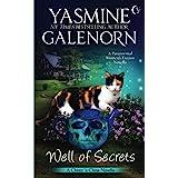 Well of Secrets: A Paranormal Women's Fiction Novella