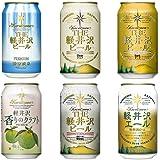 クラフトビール 飲み比べ ビール 詰め合わせ お試し 軽井沢ビール セット プチギフト 家飲み BBQ 6種6缶 N-EG