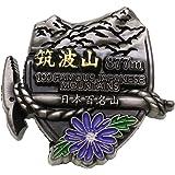 日本百名山[ピンバッジ]イブシピンズ/筑波山 エイコー トレッキング 登山 グッズ 通販