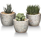 T4U Cement Succulent Pot, Concrete Planter Cactus Plant Herb Container for Gardening Home and Office Decoration Birthday Wedd