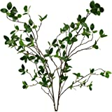 (2pcs) - Htmeing Artificial Eucalytus Green Branches Faux Ficus Twig Home Office Shop Decoration (2PCS)