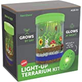 Light-up Terrarium Kit for Kids with LED Light on Lid | Create Your Own Customized Mini Garden in a Jar that Glows at Night |